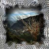 Thorsten_H_Willert_-_Wave_Frame_02